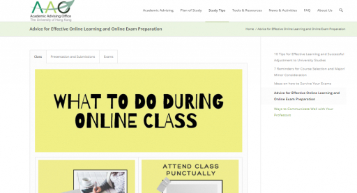 Advice for Effective Online Learning and Online Exam Preparation